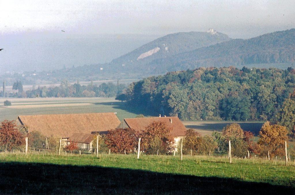 Leihouse 1962 - Vu sur Suisse