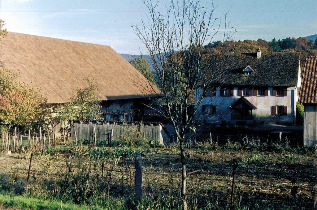 Leihouse 1962 - Jardin